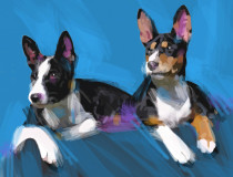Mari's Dogs